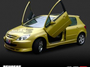 Peugeot 206 2003-2006, 5D Model, LAMBO DOOR KIT, PAIR.